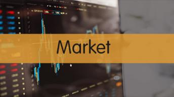 PPFAS FOF Market